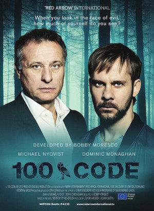 100_code_poster
